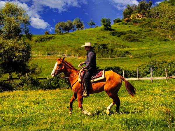 attivita-equitazione