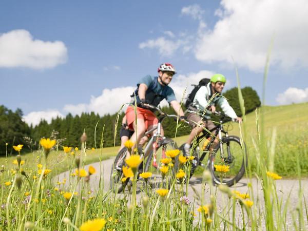 attivita-noleggio-bici